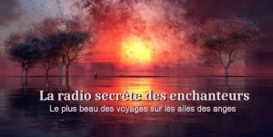 radio enchanteur ange anges cartes oracles anges radio ange ho oponopono amour voyance cartomancie lille